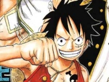 One Piece The Hot Fight